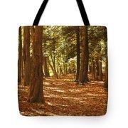 Fall Pathway Tote Bag