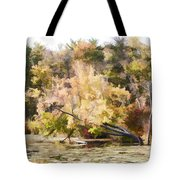 Fall Pond Tote Bag