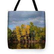 Fall Pond Reflection Tote Bag