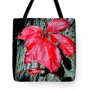 Fall Red Leaf Tote Bag