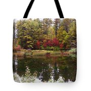Fall Reflection And Colors Tote Bag