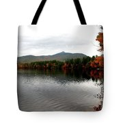 Fall Reflection II Tote Bag
