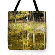 Fall Reflection In Yosemite 2 Tote Bag