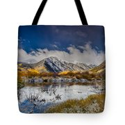 Fall Reflection Pond Tote Bag