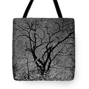Fall Reflection Tote Bag