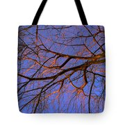 Fall Reflections By Diana Sainz Tote Bag