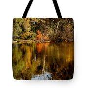 Fall Reflections Tote Bag