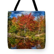 Fall Reflections In Maine Img 6312 Tote Bag
