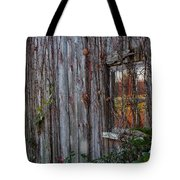 Fall Reflections On Weathered Glass Tote Bag