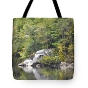 Fall Reflections Wc Tote Bag