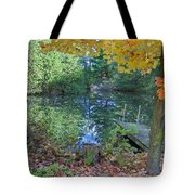 Fall Scene By Pond Tote Bag