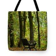 Fall Seating  Tote Bag