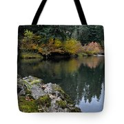 Fall Series 29 Tote Bag