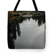 Fall Series 30 Tote Bag