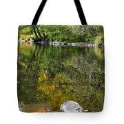 Fall Series 33 Tote Bag