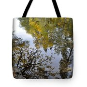 Fall Series 34 Tote Bag