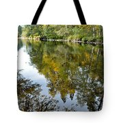 Fall Series 35 Tote Bag