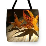Fall Shadow Landscape Tote Bag