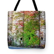 Fall Silos Tote Bag