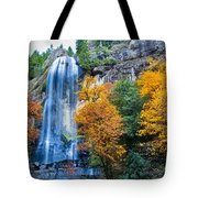Fall Silver Falls Tote Bag