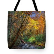 Fall Solitude Tote Bag