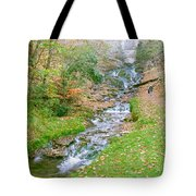 Fall Springs Tote Bag