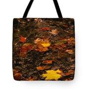 Fall Stream Bed Tote Bag