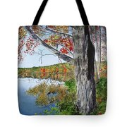 Fall Tree Tote Bag