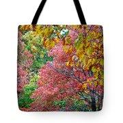 Fall Tree Leaves Tote Bag