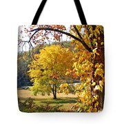 Fall Trees 4 Of Wnc Tote Bag