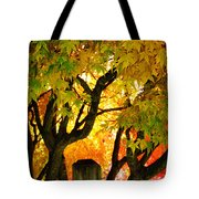 Fall Trees On A Country Road 3 Tote Bag
