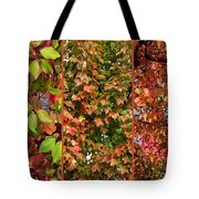 Fall Trio Collage Tote Bag