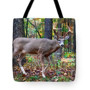 Fall Trophy Buck Tote Bag