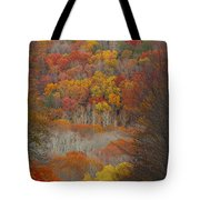 Fall Tunnel Tote Bag