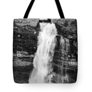 Waterfall Under The Bridge Tote Bag