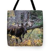 Fall Warrior Tote Bag