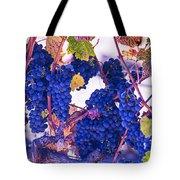 Fall Wine Grapes Tote Bag
