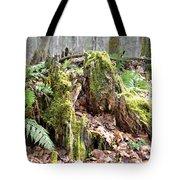 Fall Woods Tote Bag