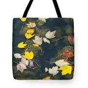 Fallen Leaves 2 Tote Bag