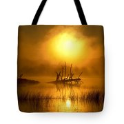 Fallen Tree In Misty Sunrise At Tote Bag