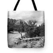 Fallen Tree Tote Bag