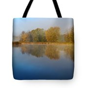 Falling For Reflections... Tote Bag