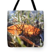 Falling For The Light Tote Bag