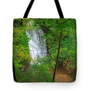 Falling Foss Waterfall In North York Moors National Park Tote Bag