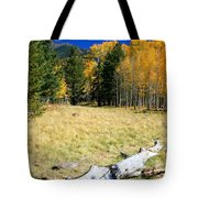 Falling In Flagstaff Tote Bag