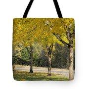Falling Leaves From Neighborhood Beech Trees Tote Bag