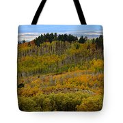 Falling On The Deserts Edge Tote Bag
