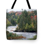 Falls And Color Tote Bag
