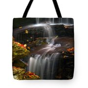 Falls And Fall Leaves Tote Bag