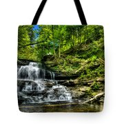 Falls And Steps Tote Bag